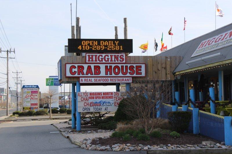 higgins-north-10